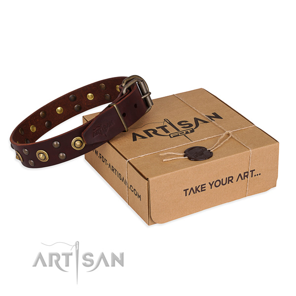 Reliable fittings on full grain genuine leather collar for your lovely dog