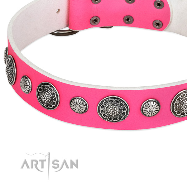 Leather collar with reliable fittings for your attractive pet