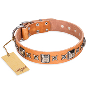 """Glamour Finery"" FDT Artisan Female Boxer collar of natural leather with stylish old-looking circles"