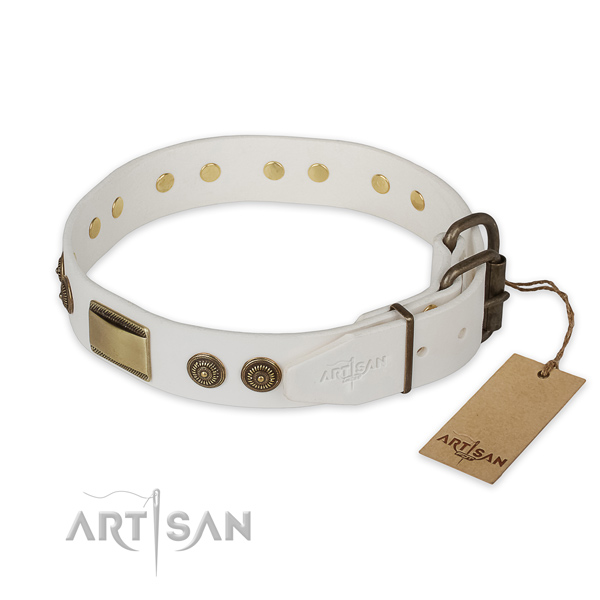 Corrosion proof traditional buckle on full grain natural leather collar for basic training your dog