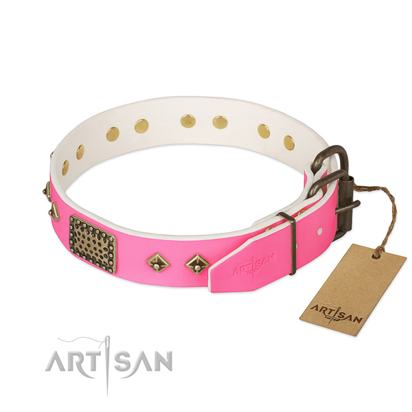 Strong traditional buckle on stylish walking dog collar