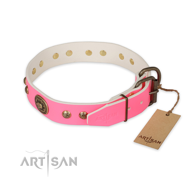 Reliable traditional buckle on leather collar for everyday walking your four-legged friend