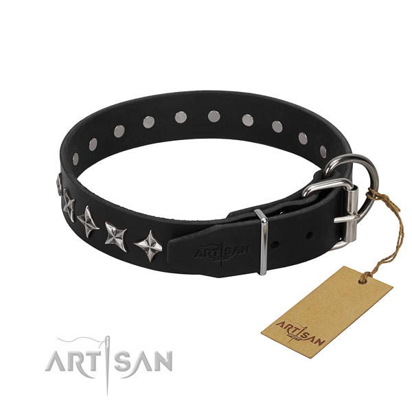 Walking embellished dog collar of fine quality full grain genuine leather