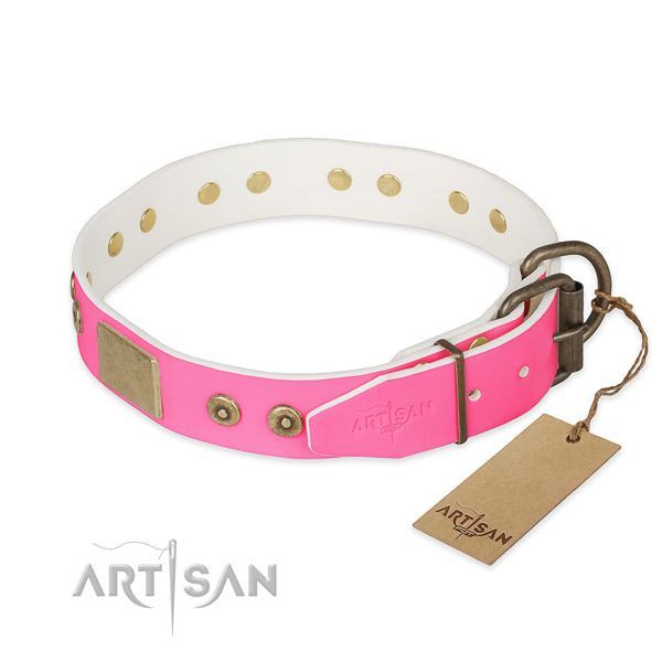 Strong hardware on everyday use dog collar