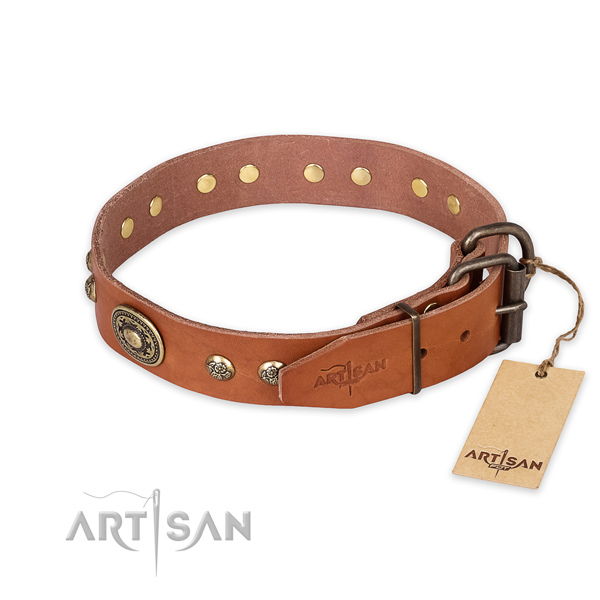 Strong buckle on full grain leather collar for stylish walking your four-legged friend