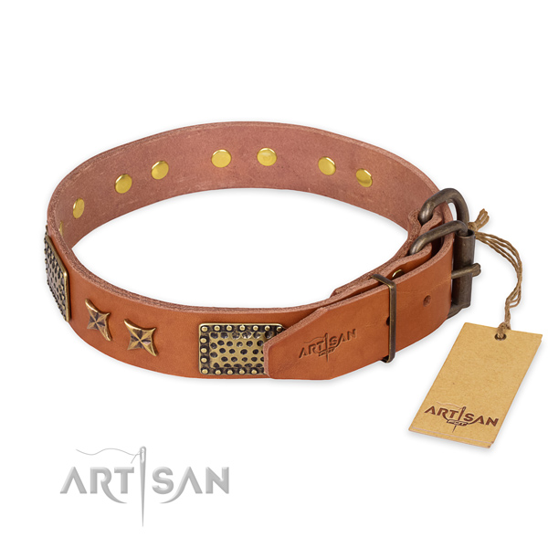 Reliable D-ring on genuine leather collar for your lovely pet