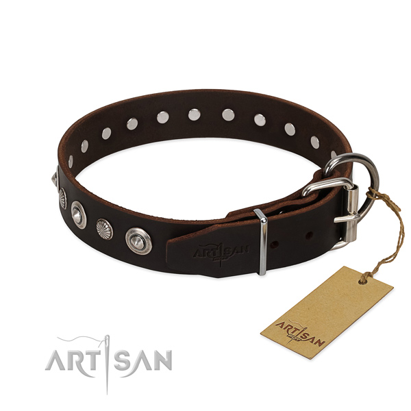 Fine quality full grain genuine leather dog collar with significant embellishments