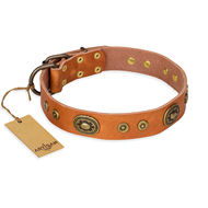 """Dandy Pet"" FDT Artisan Handcrafted Tan Leather Boxer Collar"