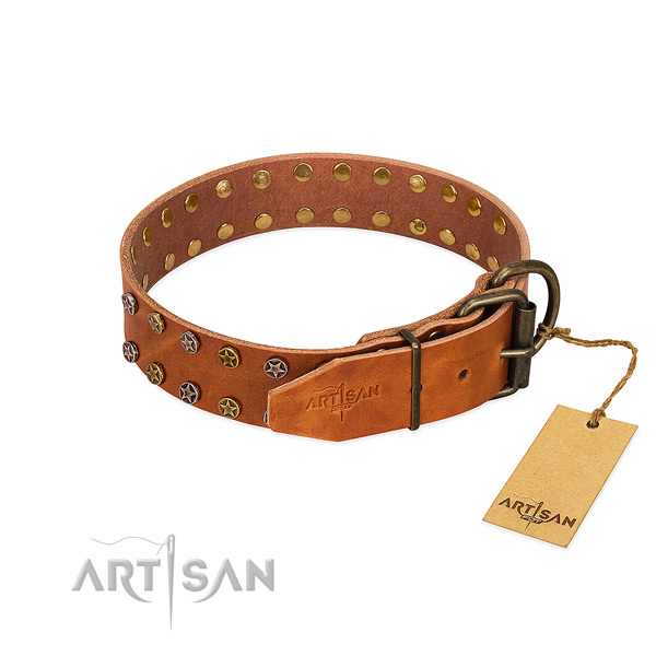 Comfortable wearing natural leather dog collar with awesome embellishments
