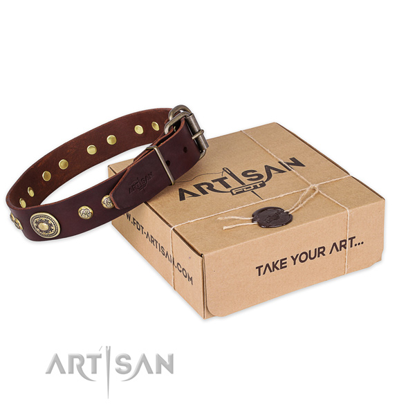 Corrosion proof fittings on full grain natural leather dog collar for comfy wearing