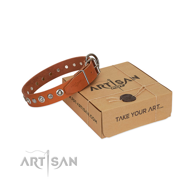 Durable natural leather dog collar with remarkable studs