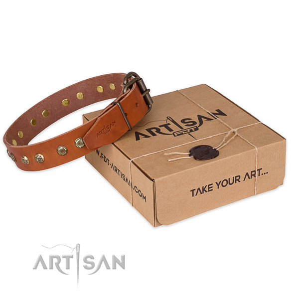 Durable fittings on genuine leather collar for your beautiful four-legged friend