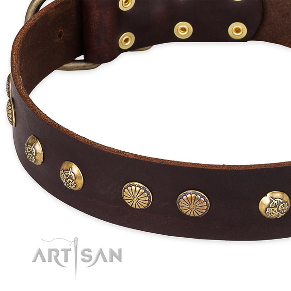 Natural genuine leather collar with reliable hardware for your attractive canine