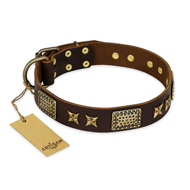 """Sparkling Bronze"" FDT Artisan Genuine Leather Boxer Collar with Bronze Look Stars and Plates"