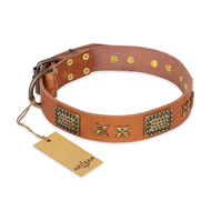 """Cosmic Traveller"" FDT Artisan Adorned Leather Boxer Collar with Old Bronze-Plated Stars and Plates"