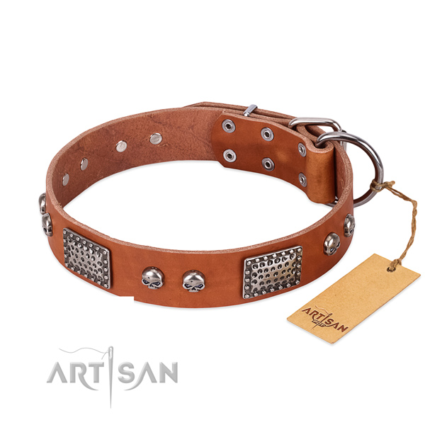 Adjustable natural genuine leather dog collar for basic training your dog