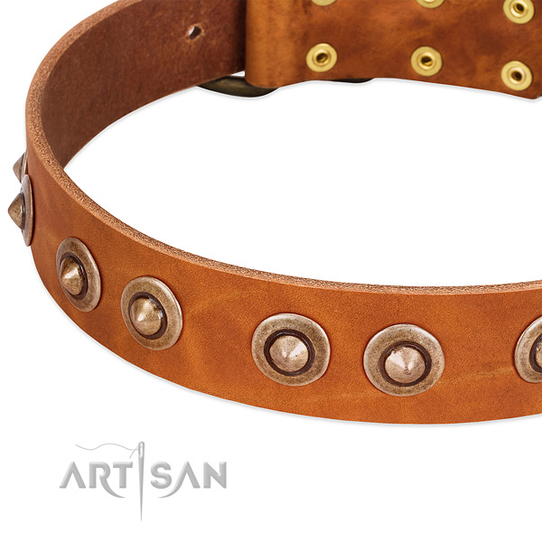 Durable traditional buckle on genuine leather dog collar for your pet