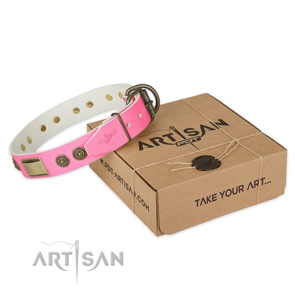 Rust-proof embellishments on dog collar for everyday walking