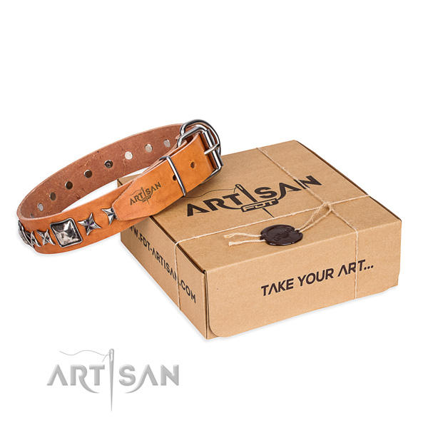 Comfy wearing full grain leather dog collar with decorations