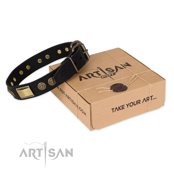Strong traditional buckle on natural genuine leather dog collar for easy wearing