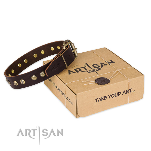 Reliable fittings on leather collar for your beautiful canine