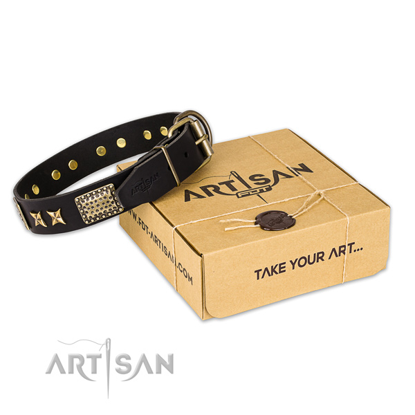 Durable traditional buckle on natural genuine leather collar for your attractive four-legged friend