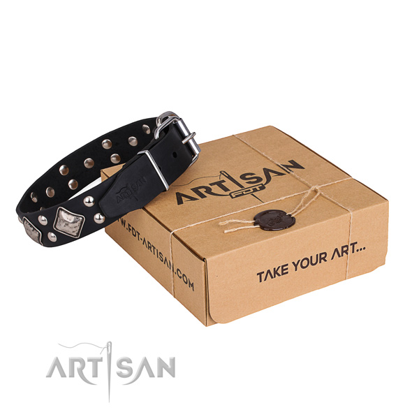 Daily walking dog collar with Stylish rust-proof adornments