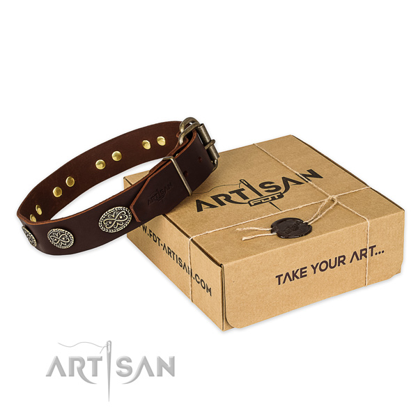 Corrosion resistant traditional buckle on leather collar for your impressive canine