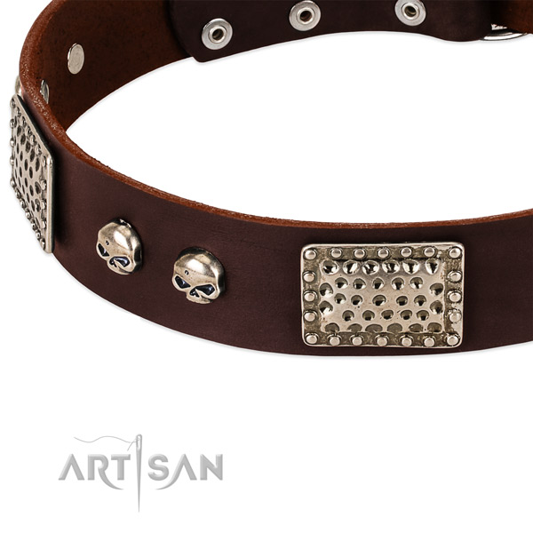 Durable decorations on full grain genuine leather dog collar for your doggie
