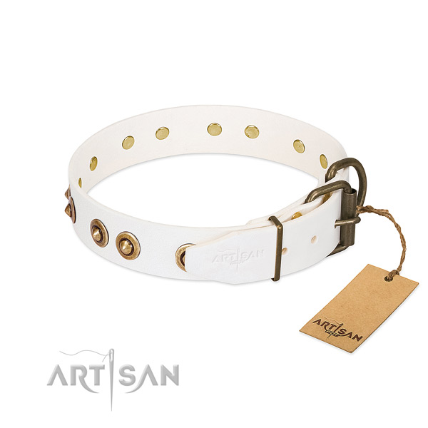 Corrosion resistant traditional buckle on full grain genuine leather dog collar for your pet