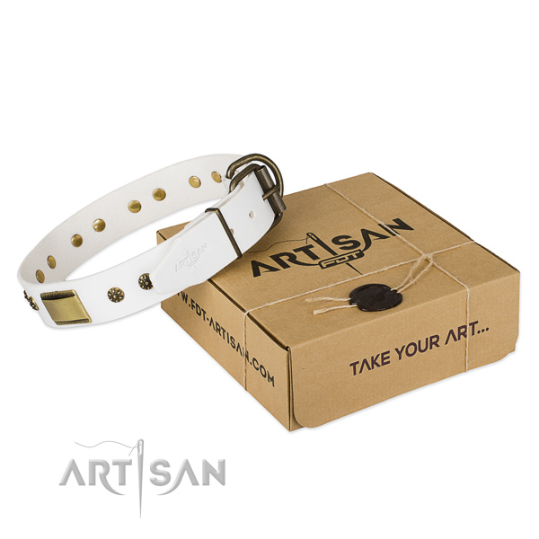 Extraordinary full grain leather collar for your attractive pet