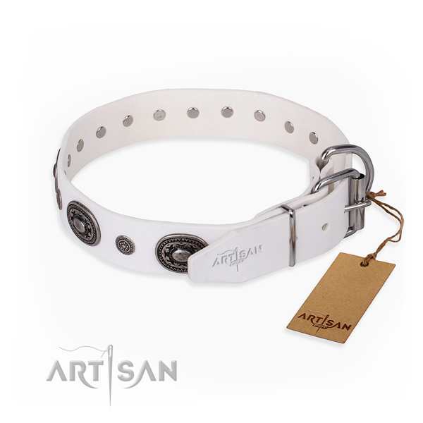 Best quality full grain leather dog collar created for everyday use
