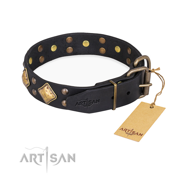 Full grain natural leather dog collar with trendy strong studs