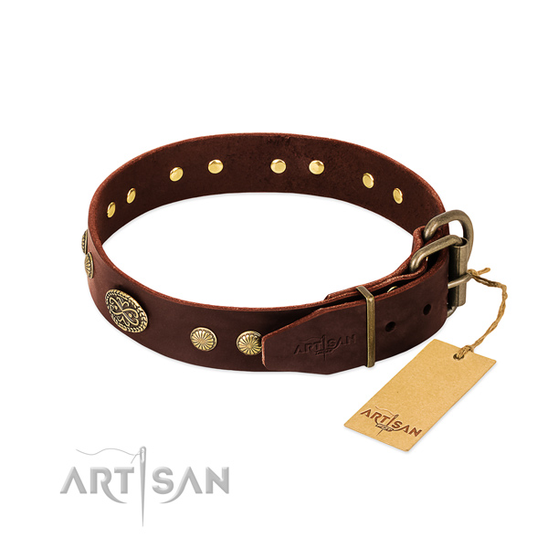 Corrosion proof traditional buckle on leather dog collar for your canine