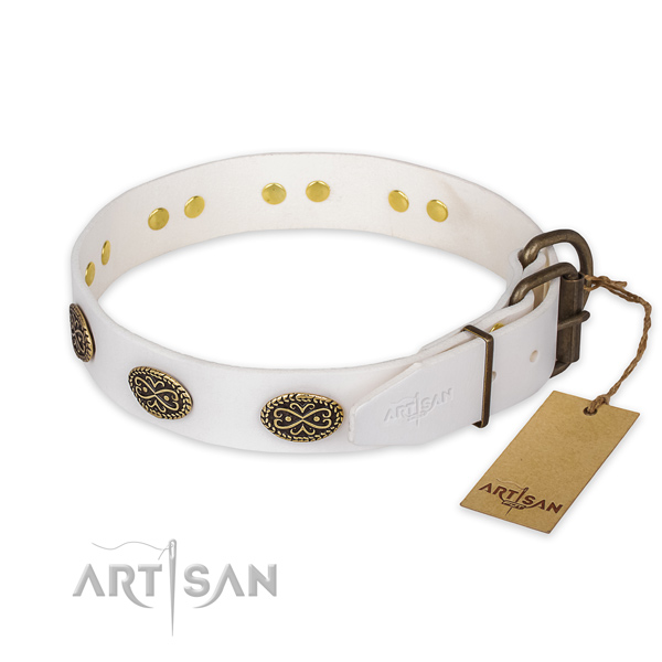Rust resistant buckle on full grain leather collar for stylish walking your doggie