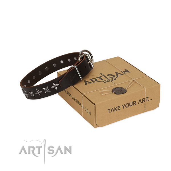 Daily use dog collar of reliable natural leather with adornments
