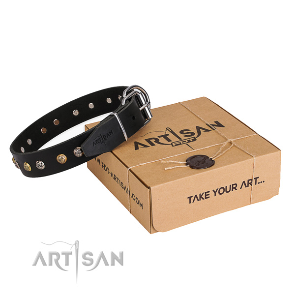 Top rate full grain leather dog collar created for walking