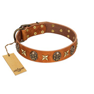 """Rockin' Doggie"" FDT Artisan Tan Leather Boxer Collar Adorned with Stars and Skulls"