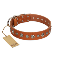 """Gorgeous Roundie"" FDT Artisan Tan Leather Boxer Collar with Chrome-plated Circles"