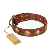 """Flight of Fancy"" FDT Artisan Adorned Leather Boxer Collar"