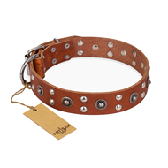 """Silver Elegance"" FDT Artisan Decorated Leather Boxer Collar with Old Silver-Like Plated Studs and Cones"