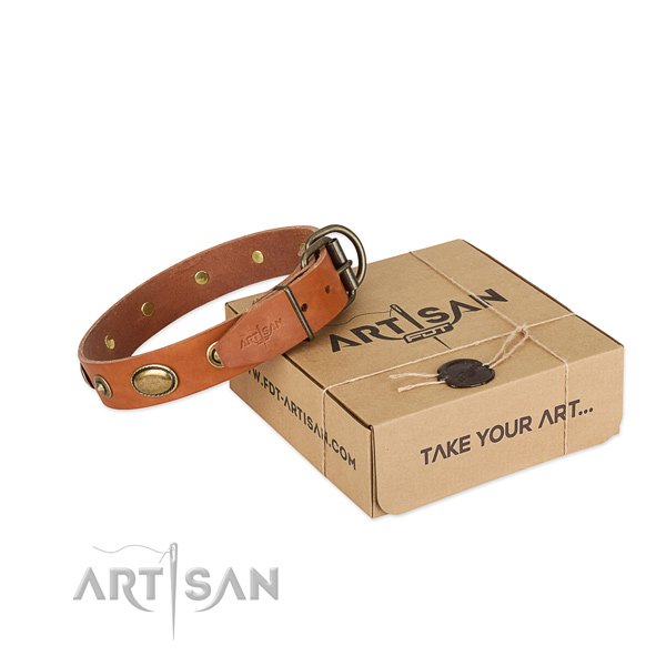 Durable hardware on leather dog collar for your canine