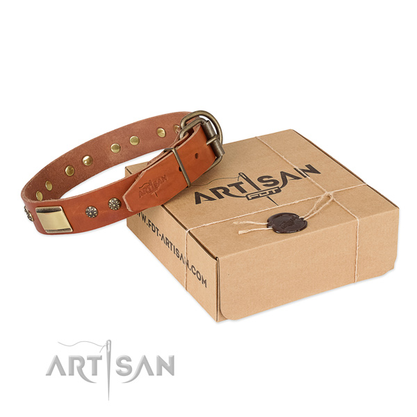 Handmade genuine leather collar for your impressive dog