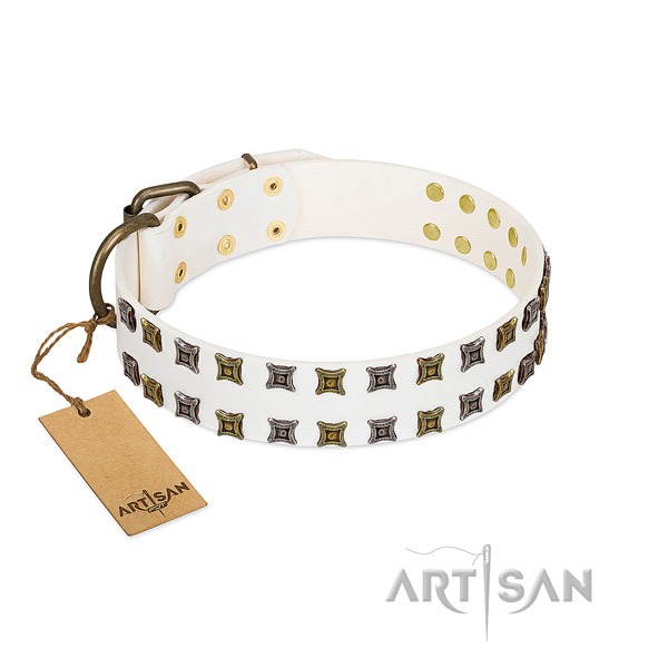 Strong full grain natural leather dog collar with embellishments for your four-legged friend