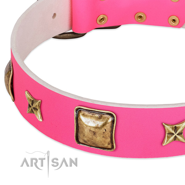 Full grain leather dog collar with amazing adornments