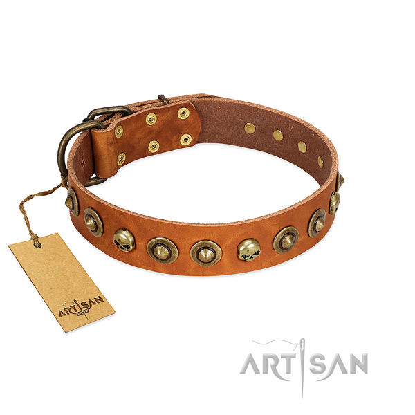 Full grain natural leather collar with significant embellishments for your doggie