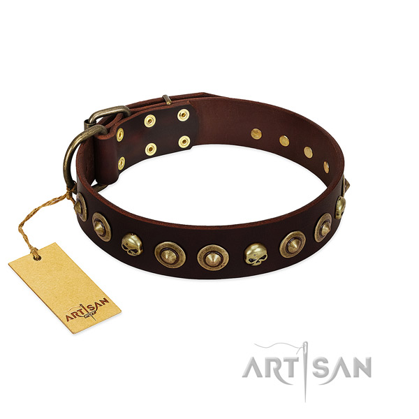Genuine leather collar with stylish design adornments for your doggie