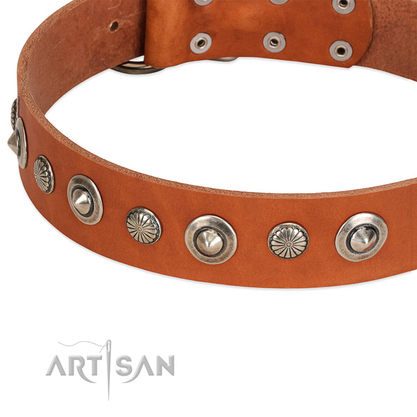 Incredible embellished dog collar of strong full grain genuine leather