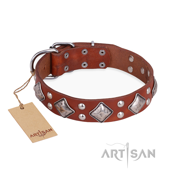 Comfy wearing significant dog collar with strong fittings