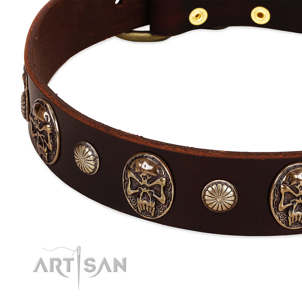 Full grain genuine leather dog collar with adornments for daily use